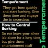 Silver Lab Temperaments