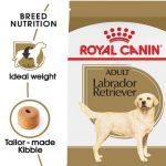 Best dog food for small dogs, Large Breeds and Sensitive Stomachs 2021