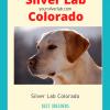 Silver Lab Colorado