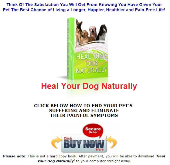 Heal your Pets