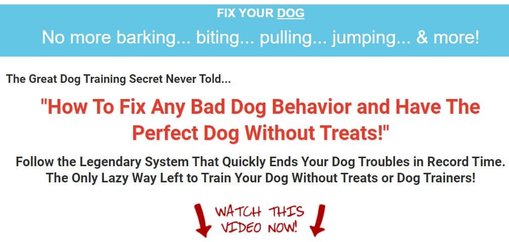 Dog Training Effortlessly