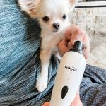 6 Best Dog Nail Grinders in 2021-Trimming Tools (Reviews)